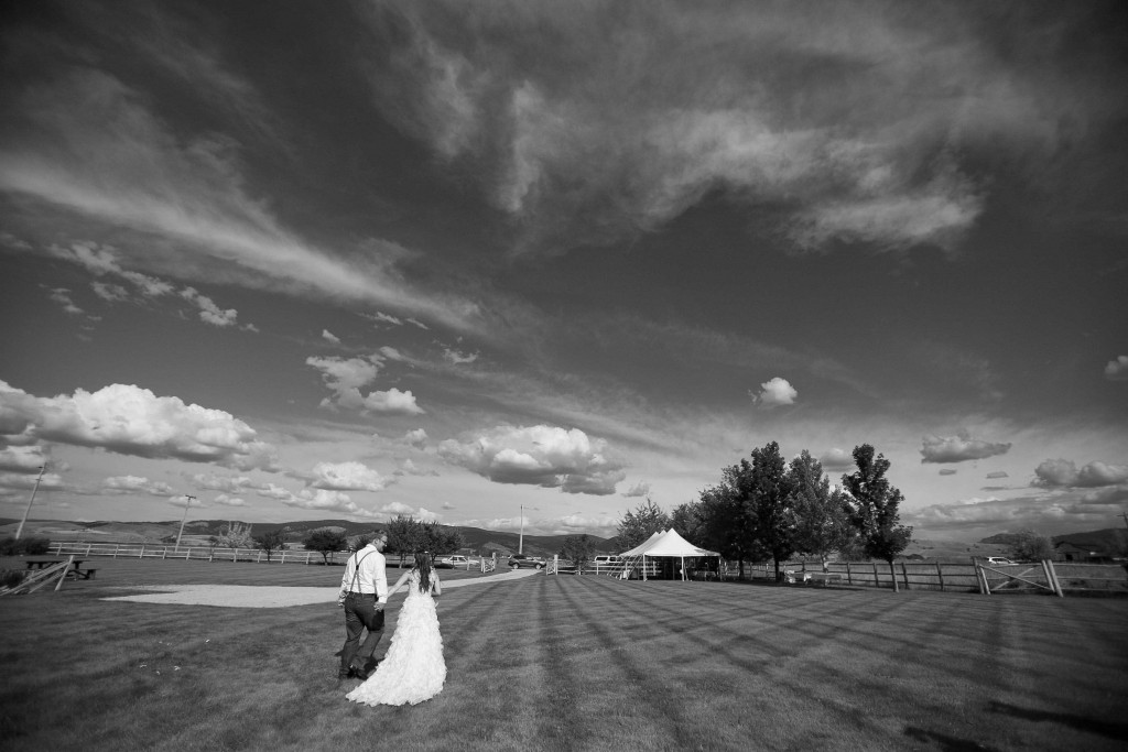 weddingphotosinstevensville